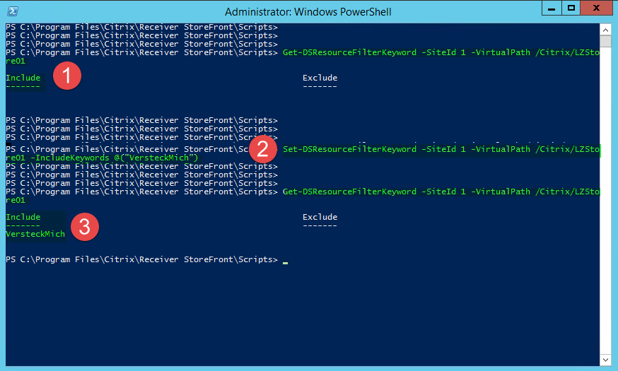 Citrix Storefront Konfigurationsfenster mit der PowerShell.